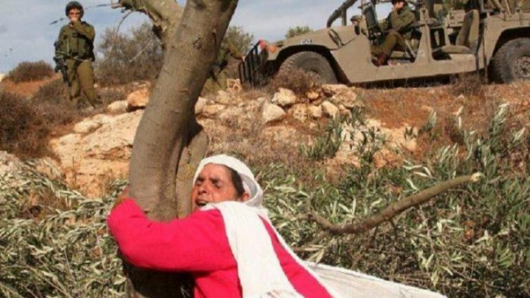 غزة المُحررة، الضفة المحتلة، اختلاط المفاهيم والتباس الواقع!